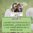 Episodio 13 - Los Efectos Positivos de la Cuarentena...¿Dónde Han Ido? Y las Desastrosas Consecuencias de la Desescalada