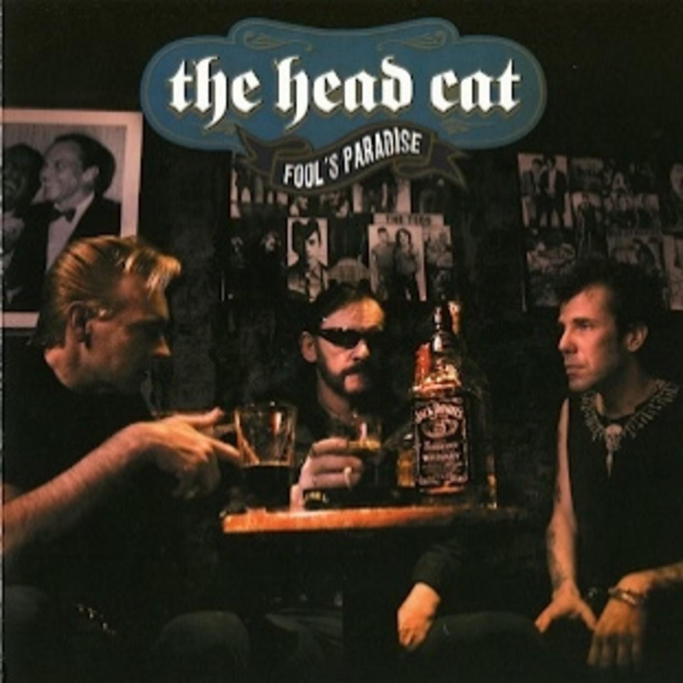 Fool's Paradise -- Head Cat