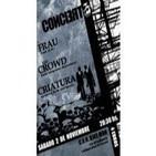 Concierto The Crowd 2/11/2013