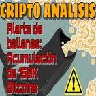 Alerta de acumulacion de 150 mil BTC en ballenas|Manipulacion y ETF en 2019?