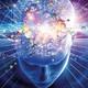 Avanzando en los enigmas del cerebro