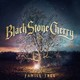 BLACK STONE CHERRY - Interview John Fred - oct. 2018 by TNT