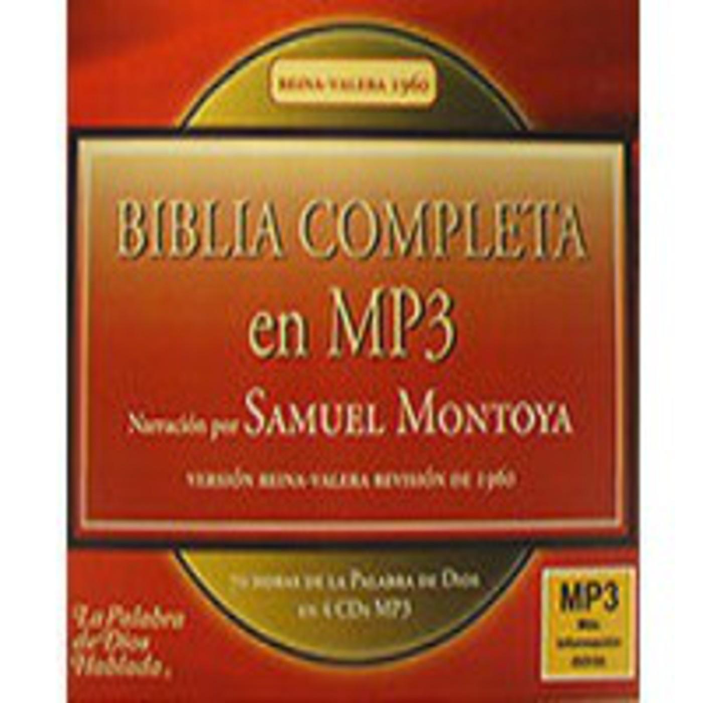 [068/156]BIBLIA en MP3 - Antiguo Testamento - Salmos