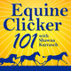 Equine Clicker 101 Lesson 14 Trailer Loading Part Two