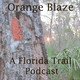 45. Slow Nature, Tiny Explorations, and Ecology as Art in Central Florida | Kate Dolamore