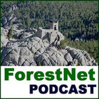 Forest Podcast