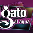 El Gato al Agua - El Toro TV