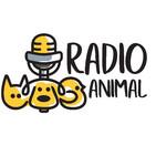 Radio Animal