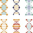 Bioètica: ètica i genètica