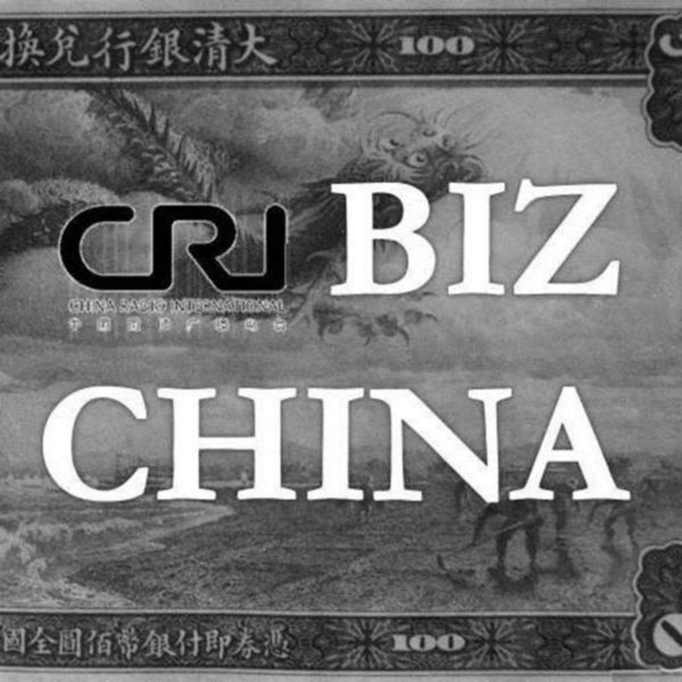 Biz China, Xinhuanet's Stock Offering