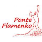 Ponte Flamenko