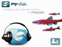 165 Aquaristik Trends auf der Interzoo (Matthias Wiesensee)