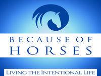 How Do You Measure Safety? Christy Landwehr, CEO, Certified Horsemanship Association
