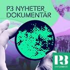 P3 Nyheter Dokumentär - Insats torsk och sexköpsrazziorna 2020-07-01 kl. 06.00