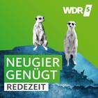 Digitale Kriegsführung - Yvonne Hofstetter