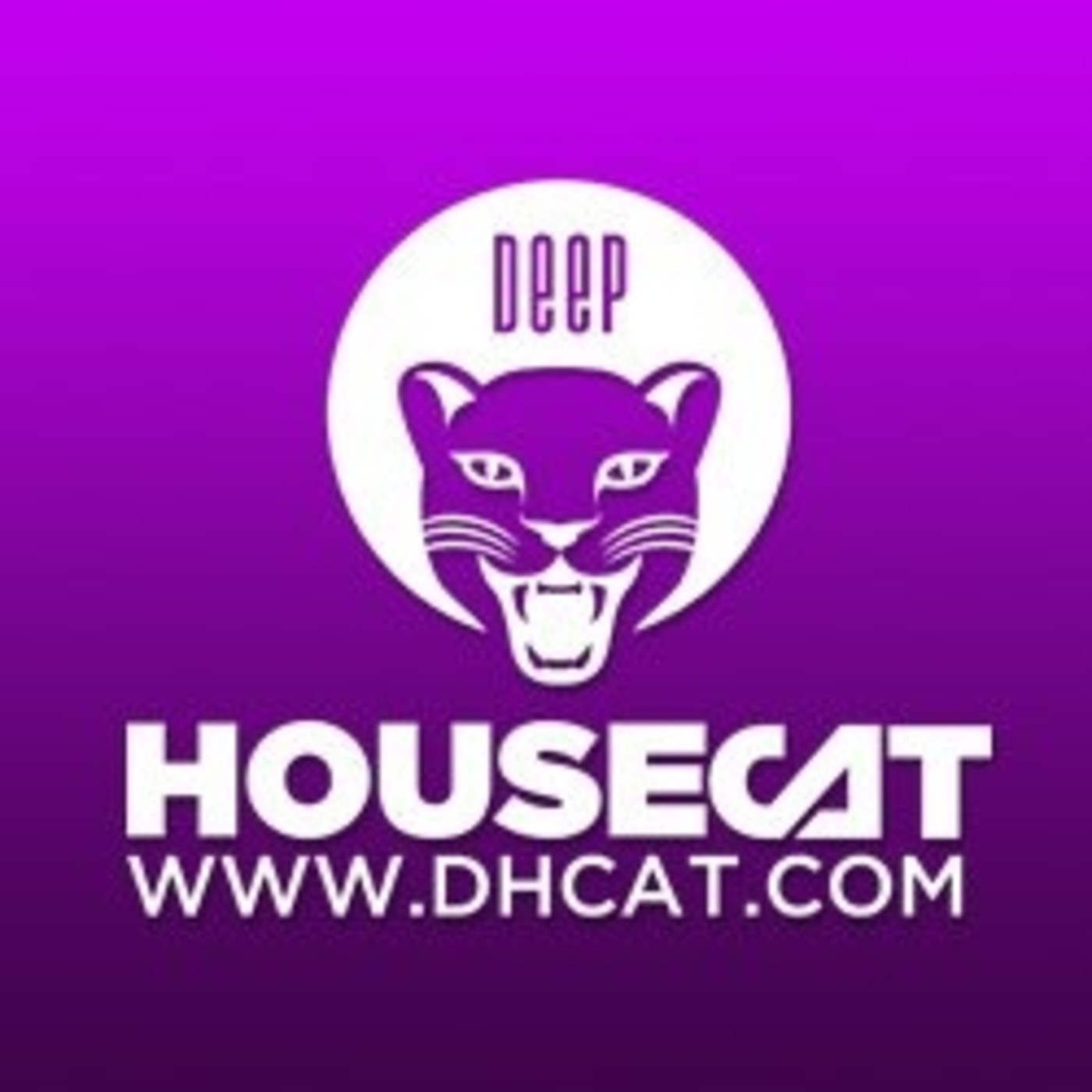 Deep House Cat Show - New Moon Mix - feat. Magoo