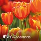 """Hoop op terugkrijgen Nederlanderschap, maar """"Juich niet te vroeg""""."""