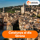 Confinacurts, curtmetratges des del confinament - 04/04/20