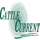 Cattle Current Podcast—May 22, 2019