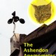 THE ASHENDON ANEMOMETER 16TH FEBRUARY 2020 ( 8 mins )