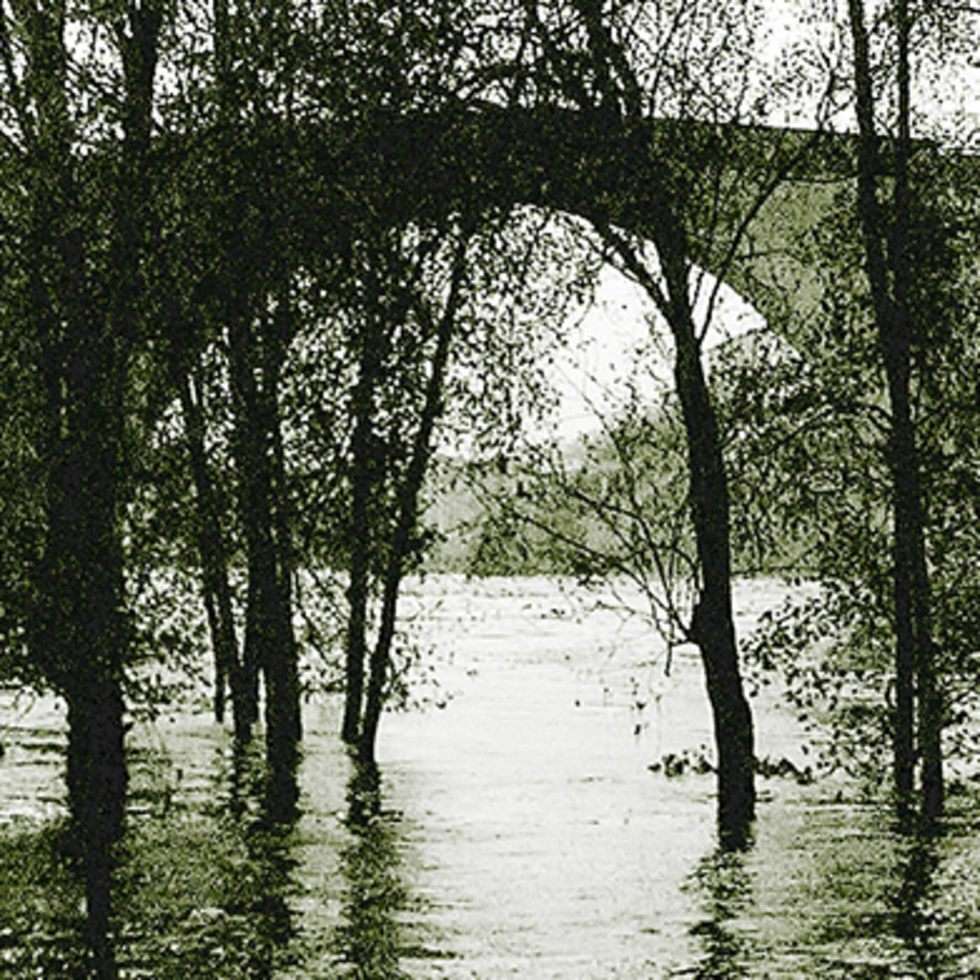 Na marxe incorrecta do río