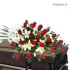 Florería sin flores