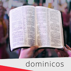 Reflexión diaria sobre la Palabra de Dios