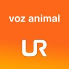 VOZ ANIMAL