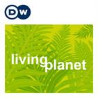Living Planet - reports   Deutsche Welle