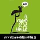 Entrevista a Juan Valero en Onda Regional de Murcia