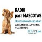 Radio para mascotas