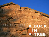 A Duck in a Tree 2020-02-22 | All of the Purpose