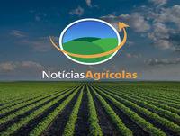 Entrevista com Luiz Carlos Carvalho - Presidente da Abag e da Canaplan