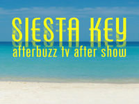 """I Had High Hopes for You"" Season 2 Episode 10 'Siesta Key' Review"