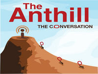 Anthill 30: Extremes