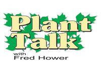 Summer Pruning 7-14-18