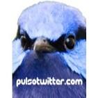 PULSOTWITTER.COM