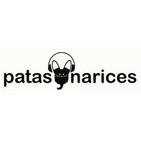 Psitácidos en Caracas: Guacamayas, loros, pericos y periquitos