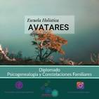 Clases Diplomado Psicogenealogía y Constelaciones