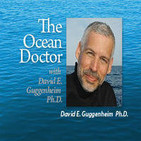 The Ocean Doctor – ABOARD THE CAPE TO CAPE EXPEDITION: AMAZING JOBS AT THE BOTTOM OF THE PLANET