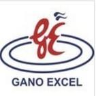 Podcast de Guru GanoExcel