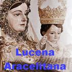 LUCENA ARACELITANA