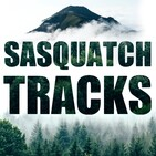 Matt Pruitt: Sasquatch Theory | ST 009