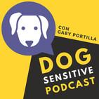 Episodio 31. Tu perro ¿puede ver fantasmas?