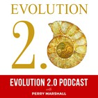 Ken Wilbur, Involution, and Evolution as a Function of the Divine: Frank Visser and Perry Marshall in Conversation