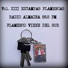 VOL. XIII EXTAMPAS FLAMENCAS-FLAMENCO VIENE DEL SU