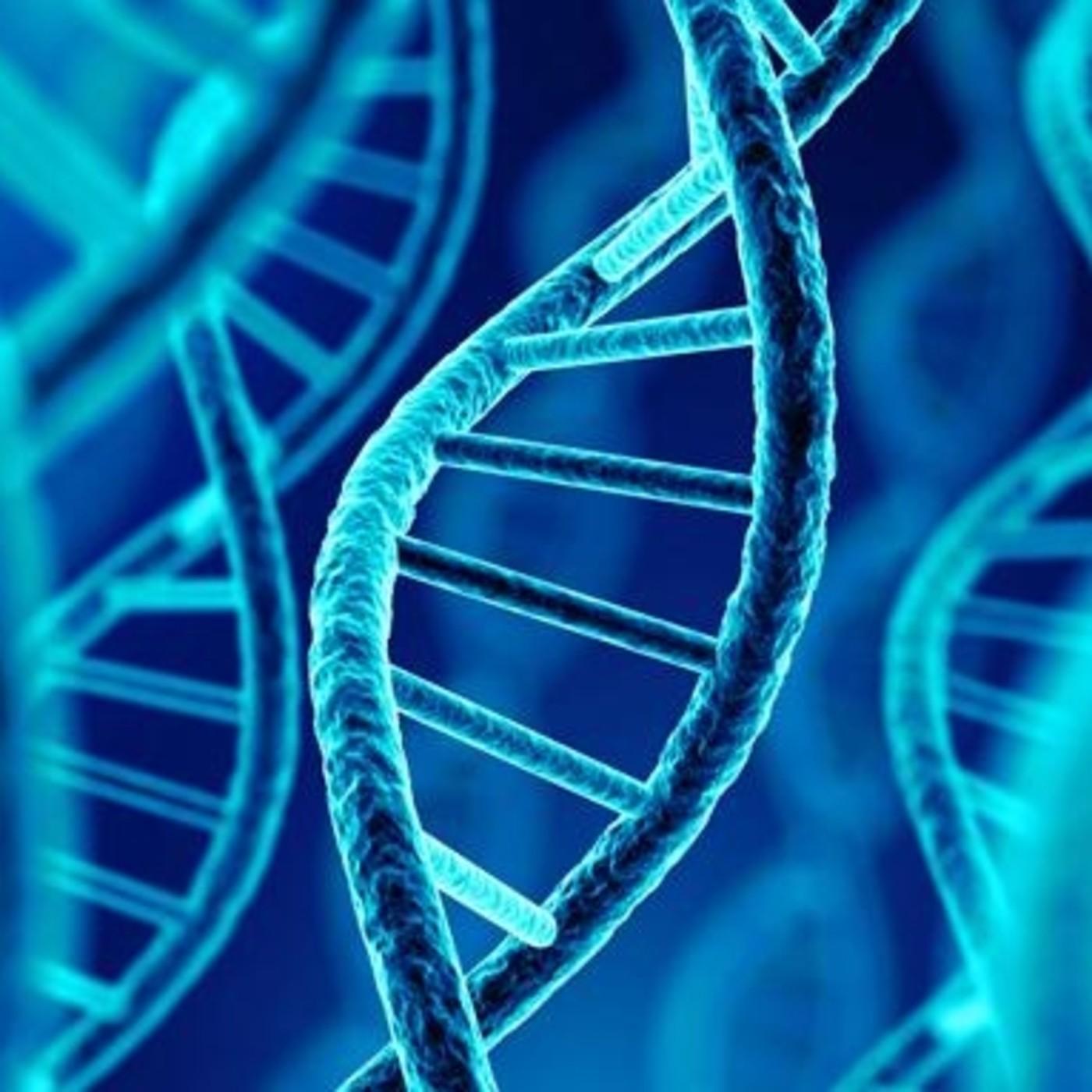 Programa 3. Origen de la Vida y test PCR.