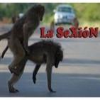 SeXióN