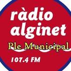 Plens Ajuntament d'Alginet