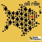 Big Fish - Radio Popolare
